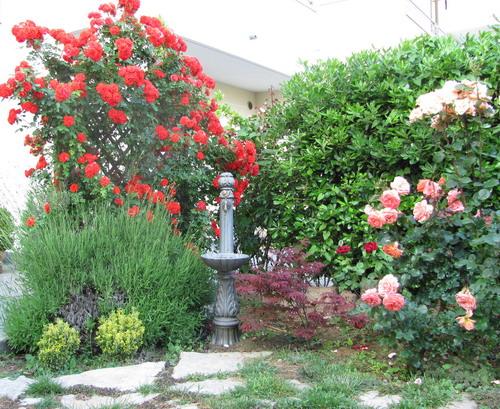 Viserba di rimini giardino fiorito con fontana elvio for Giardino fiorito