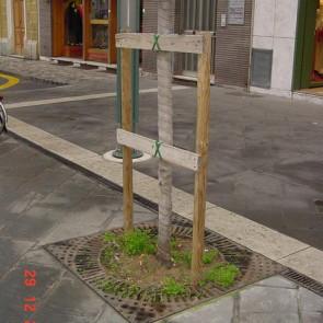 Griglia protezione aiuola albero e piante